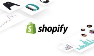 Shopify Custom Development
