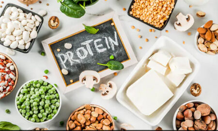 Increase Your Body Muscle With Protein
